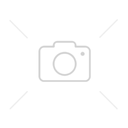 Oczar pośredni ORANGE PEEL  Hamamelis x intermedia