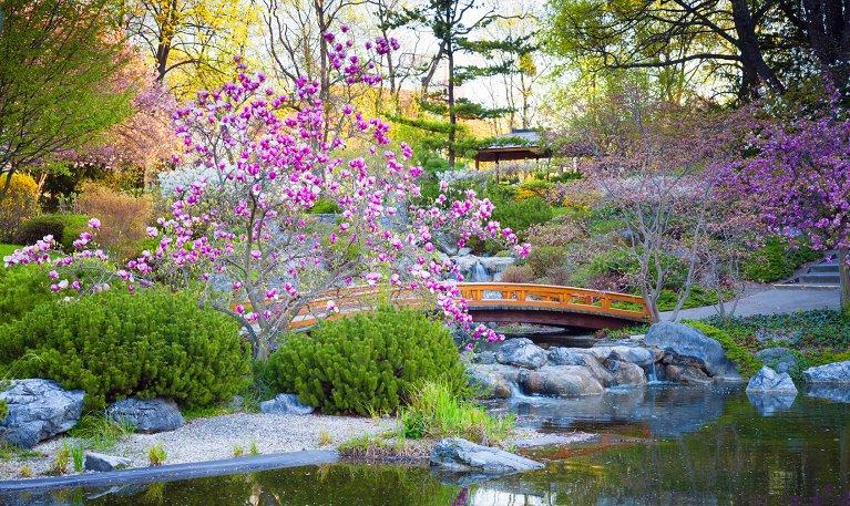 Internetowy Sklep Ogrodniczy Future Gardens Sklepy